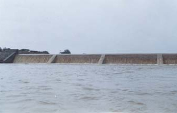 Water Stored in Check Dam.